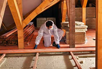 Comparing and Contrasting Attic Insulation | Attic Cleaning Los Angeles, CA