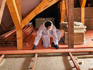 Attic Insulation Comparing and Contrasting | Attic Cleaning Los Angeles, CA