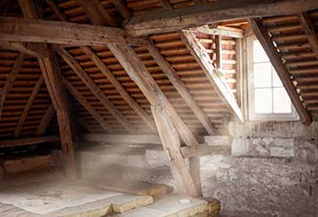 When To Have Your Attic Professionally Cleaned | Attic Cleaning Los Angeles, CA