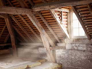 When To Have Attic Professionally Cleaned | Attic Cleaning Los Angeles, CA